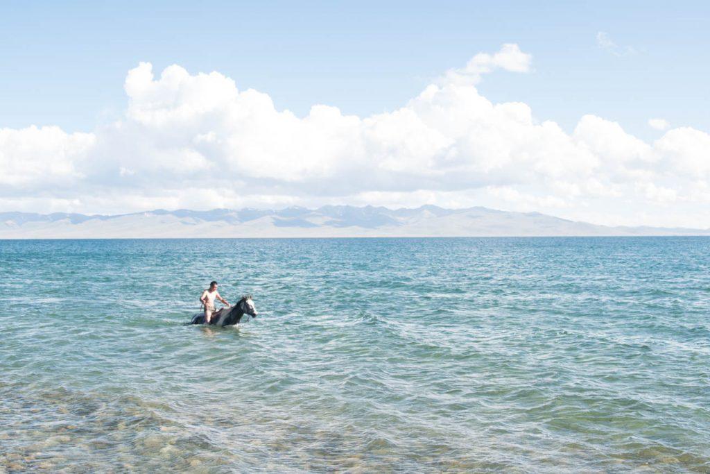 Beach Life 328254